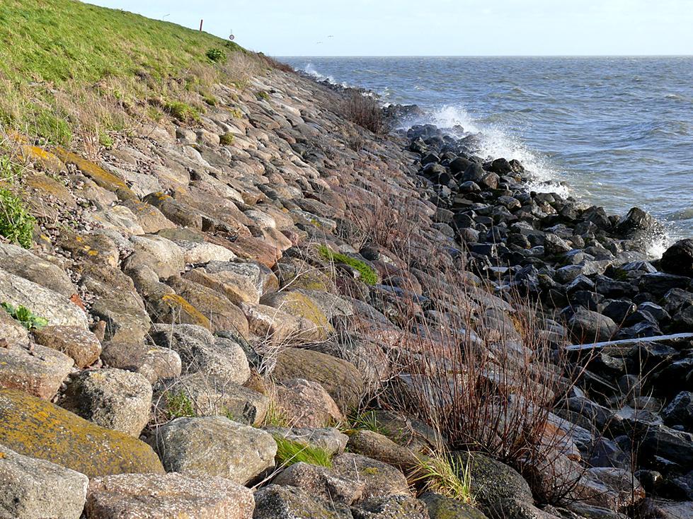 Dijkbekleding IJsselmeerdijk bij Schellinkhout (NH)