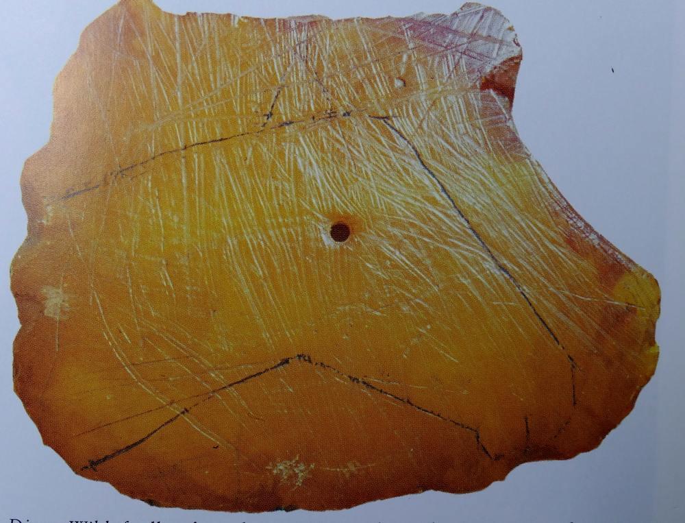 Paardekop in barnsteen, 8000 v.Chr.