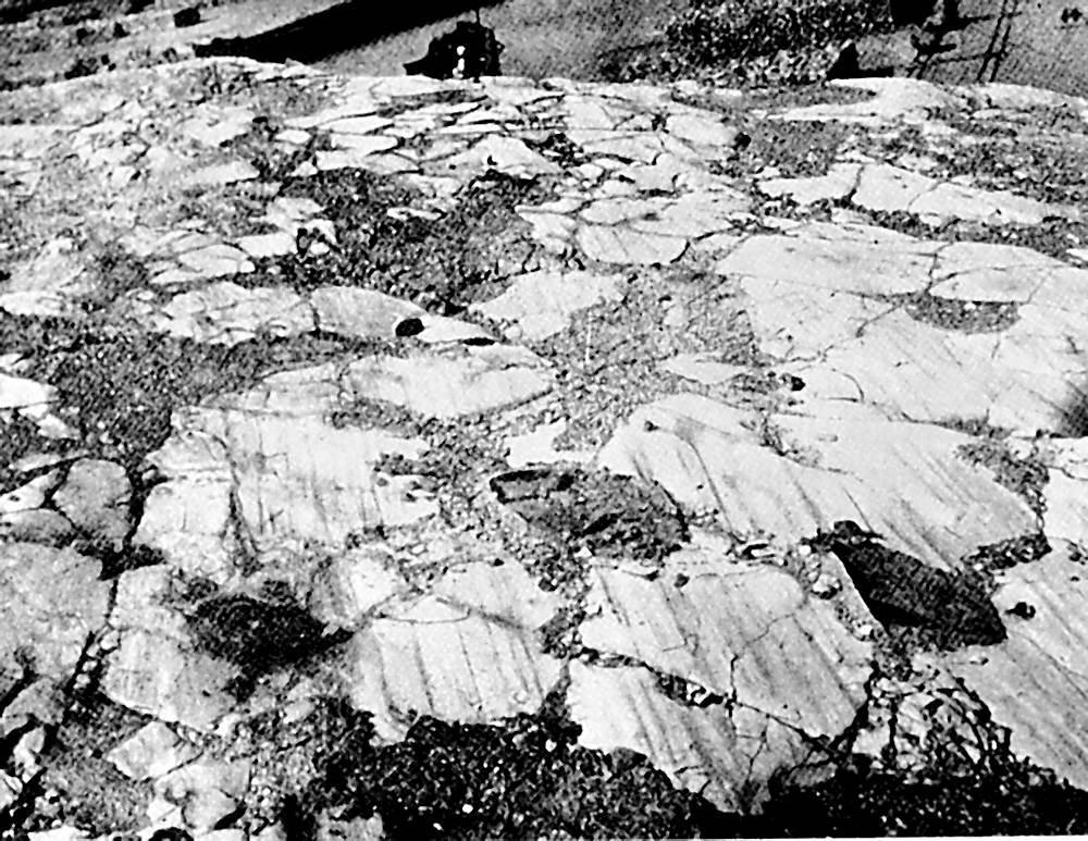 002. Deze gletsjerkrassen op de kalksteen van Rüdersdorf zorgden voor een revolutie in de ijstijdgeologie