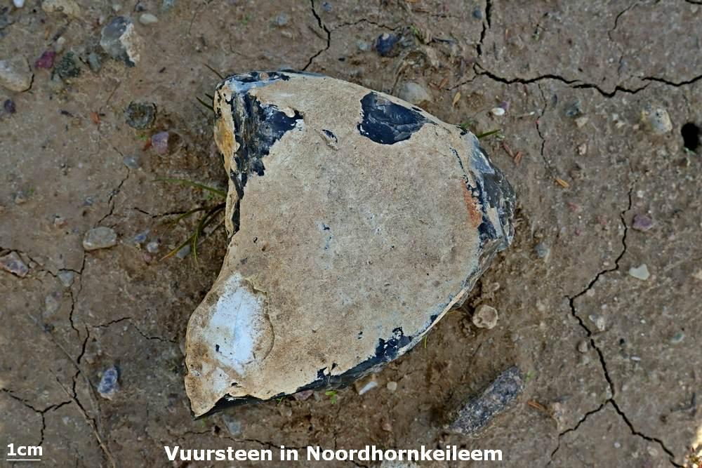 031. Vuursteen in Noordhornkeileem - Emmen