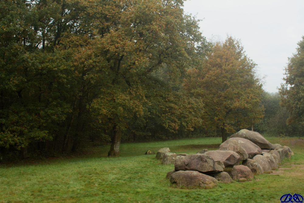 herfst7