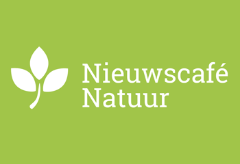 hunebed-natuur